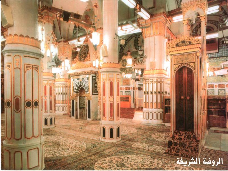 Muhammad beig software catalysts llc